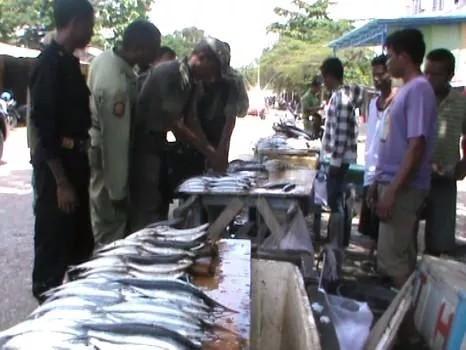 Aparat Satpol PP saat melakukan pemeriksaan terhadap sejumlah pedagang ikan di Pasar Baru, Kota Kefamenanu (foto: Lius Salu/BN)