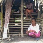 Di Amarasi Timur, Satu Keluarga Terpaksa Tinggal di Kandang Babi