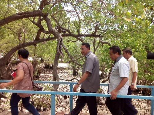 Kawasan Ekowisata Mangrove Oesapa dan Batu Kelapa Beach Diresmikan