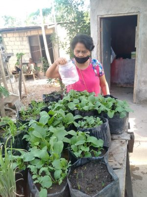 Aksi Kemanusiaan CARE dan CIS Timor Lewat Padat Karya Tunai Desa/Kelurahan